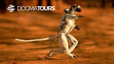 MADAGASCAR LA GRANDE ISOLA ROSSA thumb - Namatours viaggi solidali Madagascar