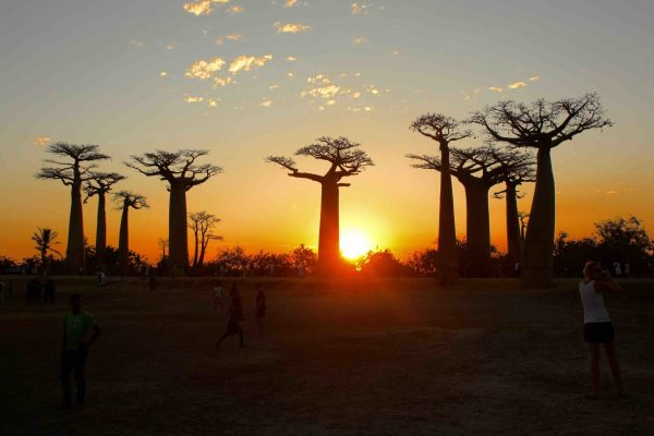 A Ovest Del Sole - Namatours viaggi solidali Madagascarq